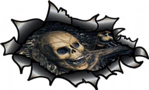 Ripped Torn Carbon Fibre Fiber Design With Evil Gothic Skull Inside Motif External Vinyl Car Sticker 150x90mm